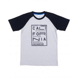 Футболка для мальчика Калифорния, серый